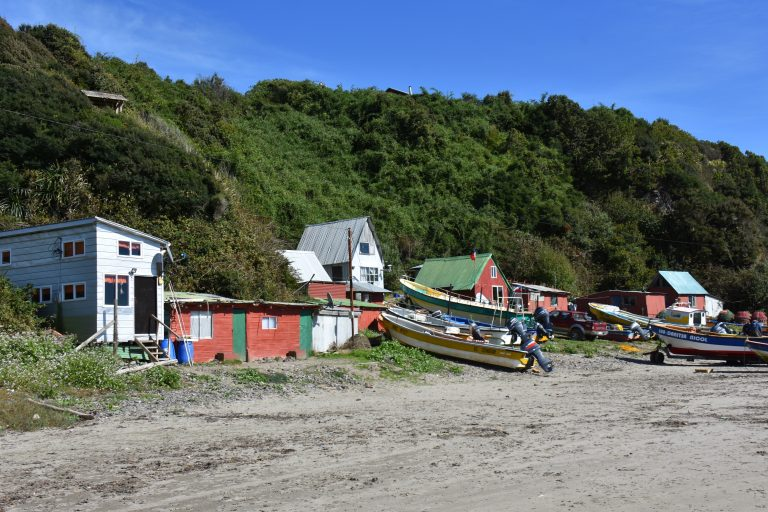 colurful houses on penguin beach Chiloe