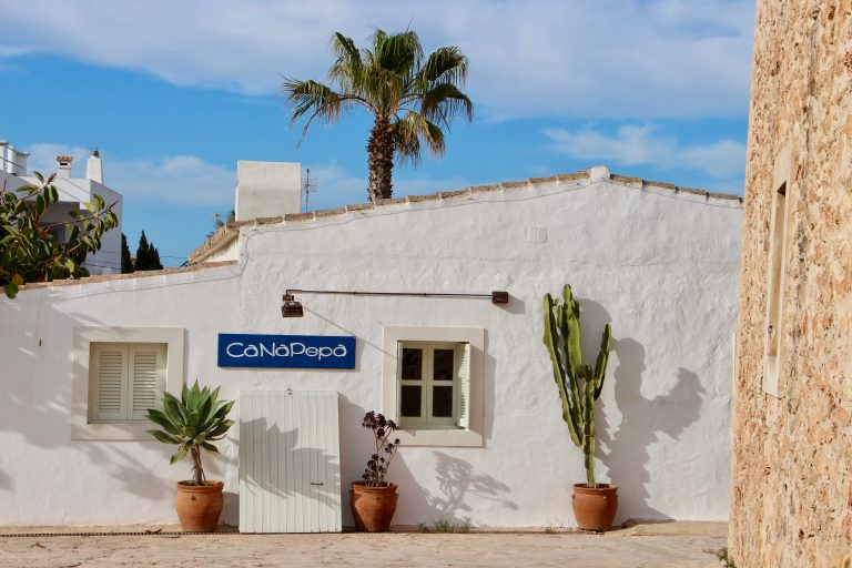 White House, palm tree, cactus in Formentera