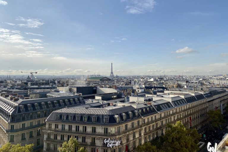 view galeries Lafayette